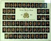 "1995 Composite Photo -- Click on this photo to see it enlarged.  Then, look below the enlarged photo, and click on the word ""original"".  This will give you a really large image, and you should be able to read the names below everyone's photo in the composites."