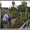 20110416-P1360297wilcox nursery