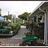 20110416-P1360291wilcox nursery