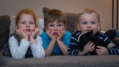 Drei Fernseheulen / Fascinated by TV