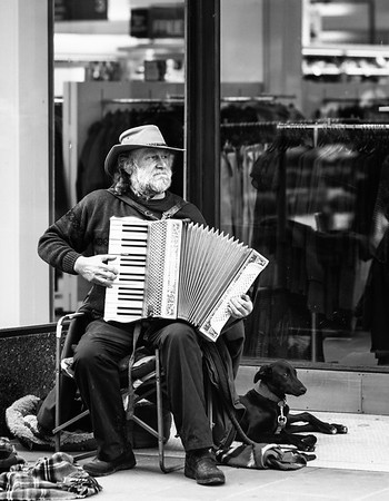 The Accordion Player and his Dog - Winchester
