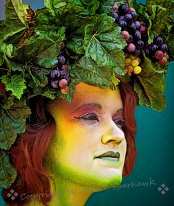 Lady Bountiful - Judith Sparhawk