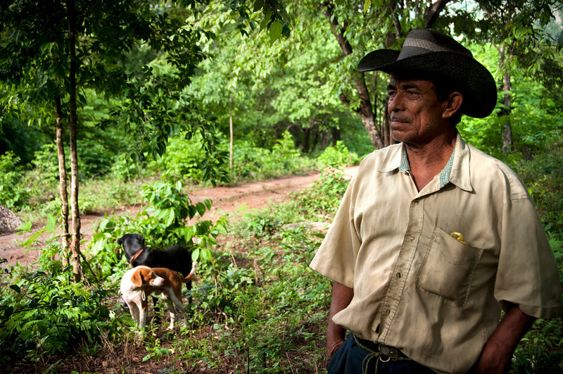 Their final destination, located behind the Perijá mountains on the border with Venezuela, stands in contrast to their refuge of the last three years. Before their forced displacement in 2010, the families lived here in their farms, planting cassava, corn and coffee.