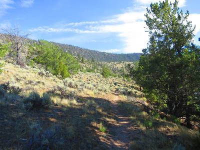 Hiking around east side of Trail Lake.