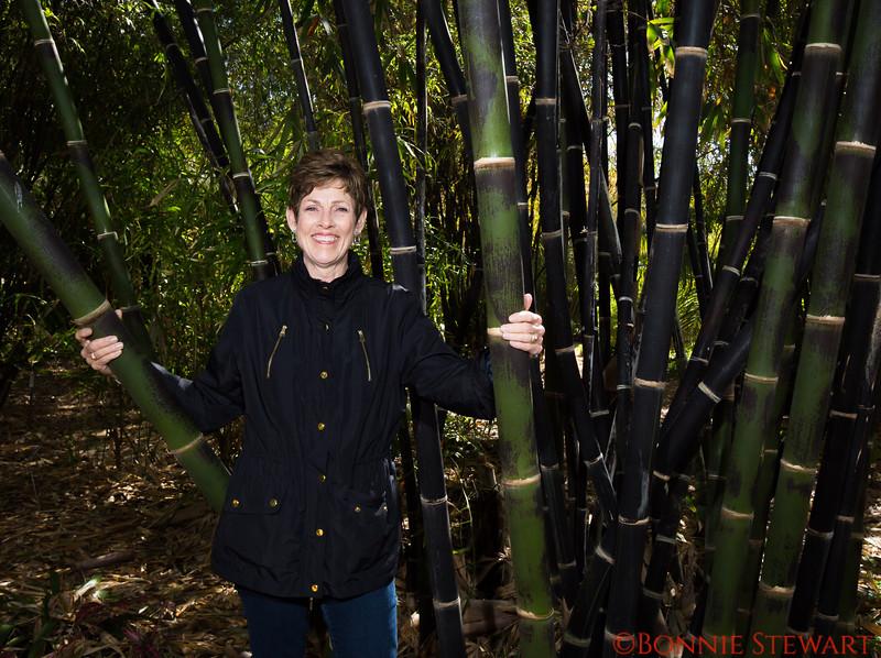 Cheryl in the Botanical Gardens black bamboo forest