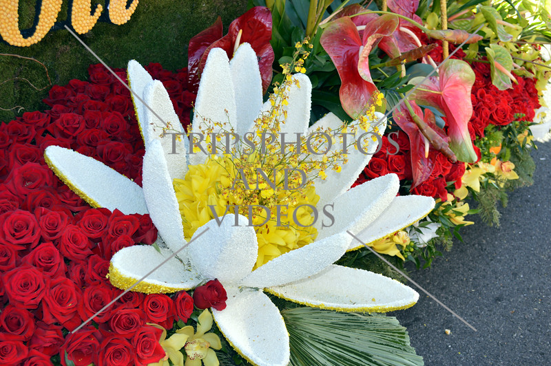 Tournament of Roses (2014) and flowers floats on view at Pasadena, California.