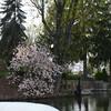 """The Portage Lakes Akron Ohio!<br /> Russian women seeking men for marriage newsletter!<br /> A Belarus Bride Too Russian Brides Newsletter!<br /> <a href=""""http://www.abelarusbride.net/news-letter.htm"""">http://www.abelarusbride.net/news-letter.htm</a>"""
