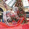 "Clint and Maryna spent Christmas in Vegas! Russian Women For Marriage! Cool Activities To Enjoy With Your Russian Bride!  A Belarus Bride  <a href=""http://www.abelarusbride.com"">http://www.abelarusbride.com</a>"
