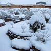 "Snow Hits Mojave Desert! Clint And Maryna Garden Photos! Cool Activities To Enjoy With Your Russian Bride!  A Belarus Bride Russian Matchmaking Agency  <a href=""http://www.abelarusbride.com"">http://www.abelarusbride.com</a>"