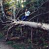 Sabrina on Fallen Tree
