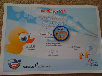 Ducklings 1-2 Certificate and Badge