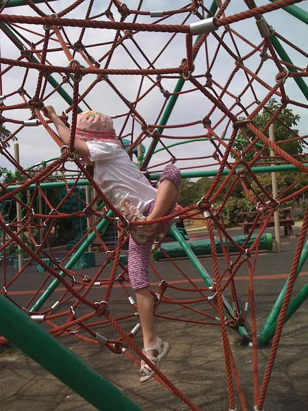 Climbing at Hove Park