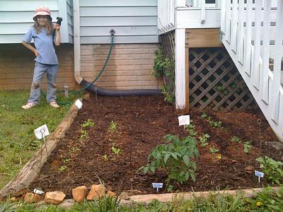 The Seedlings of the Bent Spoon Garden
