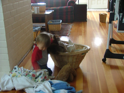 Commandeering Camus's basket for her bears