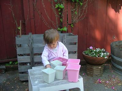 Sorting rocks into flower pots