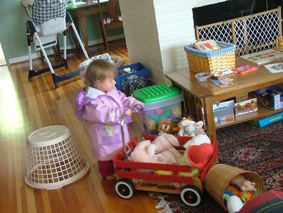 Fairy raincoat & red wagon
