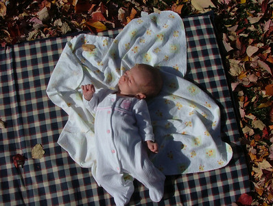 Girl on blanket on pad on leaves on grass