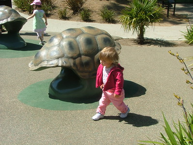She walks a lot faster than a turtle
