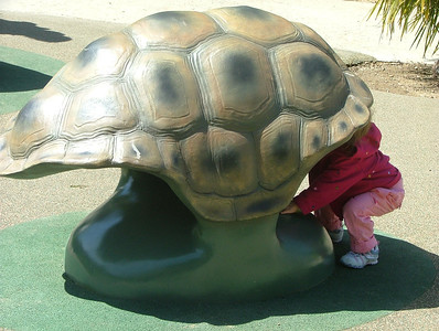 Sam tries out a turtle shell