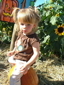Pumpkin on a pumpkin