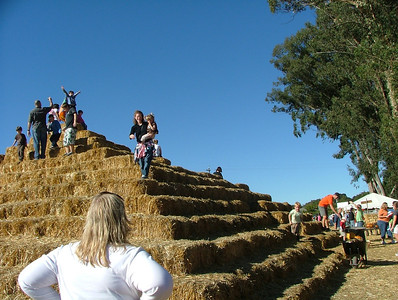Pyramid of hay