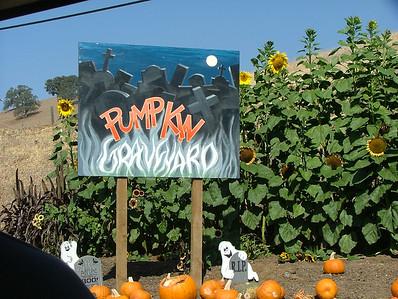 The pumpkin graveyard