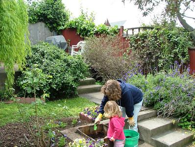 Taming the garden