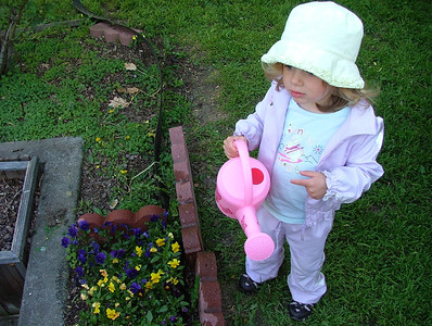 Mommy, why do we water the flowers?