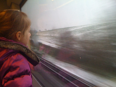 Snowy train to Lewes