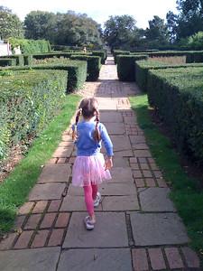 Victorian garden on Dyke Road