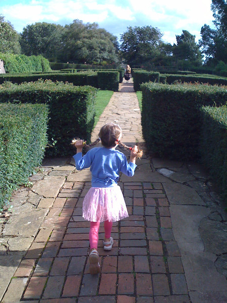Skipping through the hedges