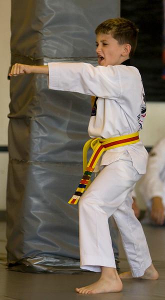 Yellow Belt Test - November 2008