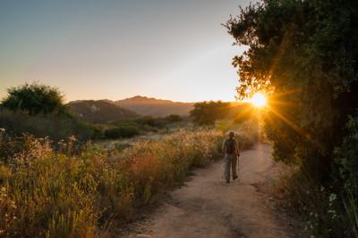 Caballo Trail Summer