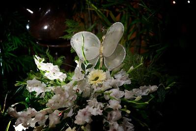 Tahiya- Wedding-2011-07-0685