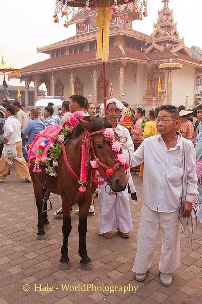 Decorated Horse, Wat Hua Wiang, Maehongson, Thailand