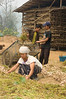 Shan Woman and Young Boy Preparing Garlic to be Hung in Drying Barn