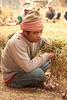 Shan Garlic Worker