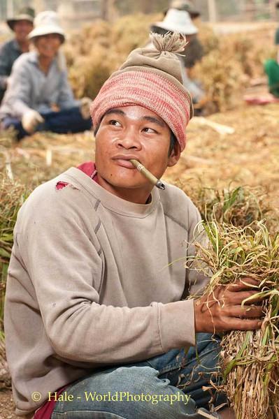 Shan Worker Smoking As He Works