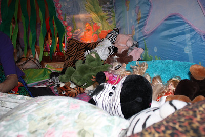 20120210 Inside Camping,Bed Tent 008