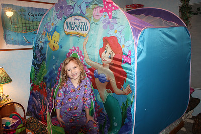 20120210 Inside Camping,Bed Tent 001
