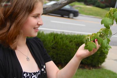 Sophie Chervitz Bat Mitzvah Photos