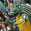"Spirit builds up the hype at a Seawolves basketball game. <div class=""ss-paypal-button"">MD2_7724.JPG</div><div class=""ss-paypal-button-end""></div>"