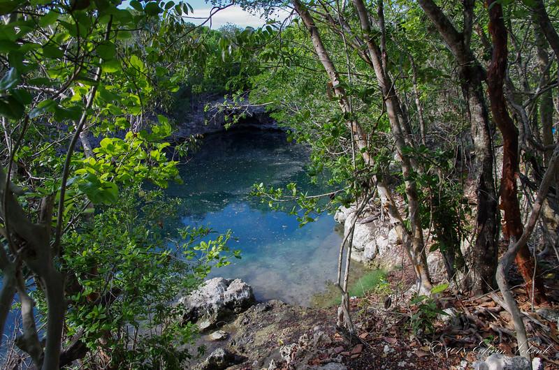 Bye bye beautiful cenote ...