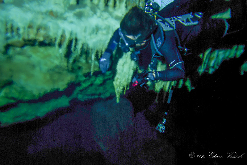 Chérie dives into a halocline