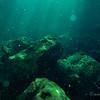 The rocky bottom of cenote Tanque Azul