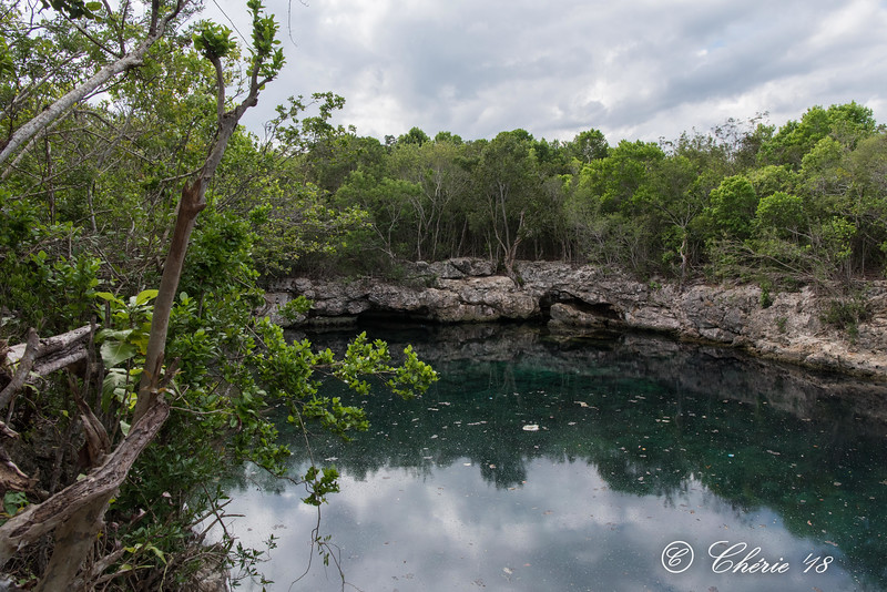 After a 40 min walk we arrive at the cenote with it's crystal clear water