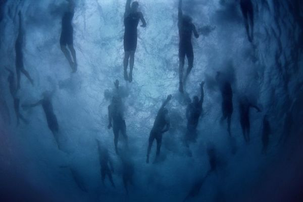 The first phase of the Kona Ironman Triathlon is the swim, 2003, The Big Island, <br /> Hawaii ( Central Pacific Ocean )<br /> 1