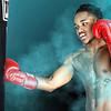 Boxer: Rakerian