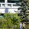 "Late spring on the campus of the University of Alaska Anchorage.  <div class=""ss-paypal-button"">20170530-Campus-TEK-008.JPG</div><div class=""ss-paypal-button-end""></div>"