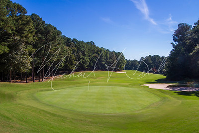 Towne Lake Hills green-9
